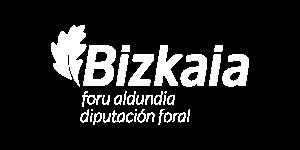 Bizkaia Foru Aldundia - Diputación Foral